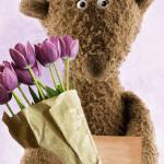 Kuschelbär mit Tulpen